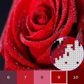 Цветочный цвет по номеру, цветные раскраски иконка