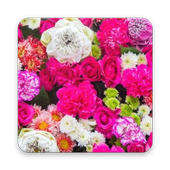 Flower Nature Wallpaper icon