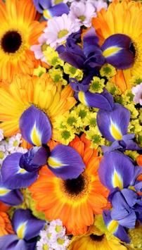 Flowers Wallpapers for Chat apk screenshot
