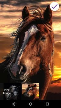 Horse Lock Screen apk screenshot