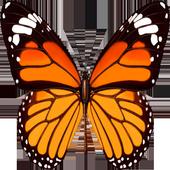 校園蝴蝶生態系統 icon
