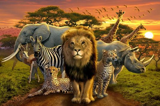 Safari Jigsaw animal puzzles screenshot 18