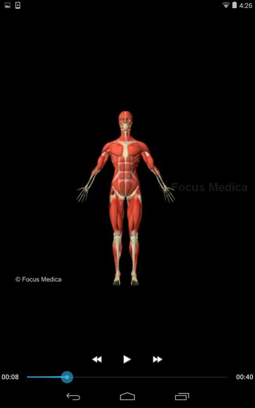 Anatomy Atlas Chinese Apk Download Free Medical App For Android