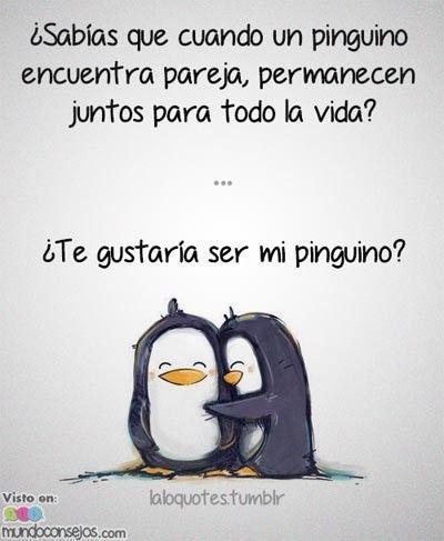 Frases Amor De Verdad For Android Apk Download