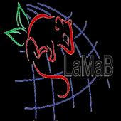 Lamab Id Key icon