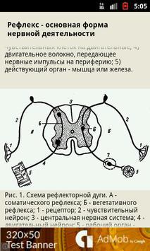 Анатомия screenshot 2