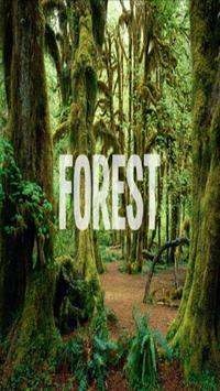 Forest Wallpaper HD Complete poster
