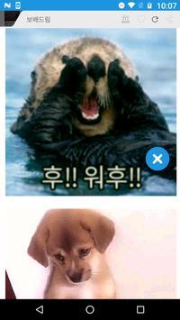 허니캐스트-커뮤니티,동영상,sns모음,honeycast apk screenshot