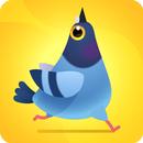 Pigeon Pop APK