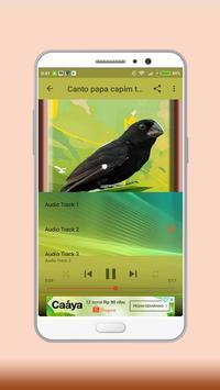 Towa Towa Bird screenshot 2