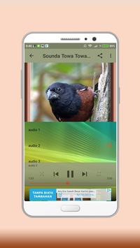 Towa Towa Bird screenshot 3