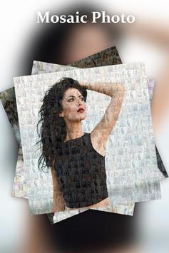 Mosaic Photo Collage Effect poster