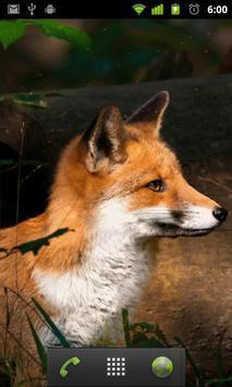 fox background apk screenshot