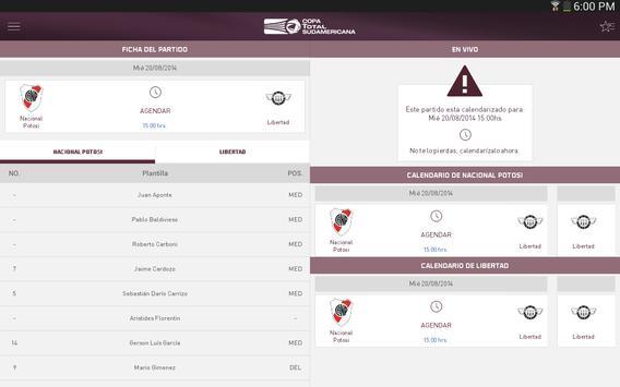 Copa TOTAL Sudamericana screenshot 4