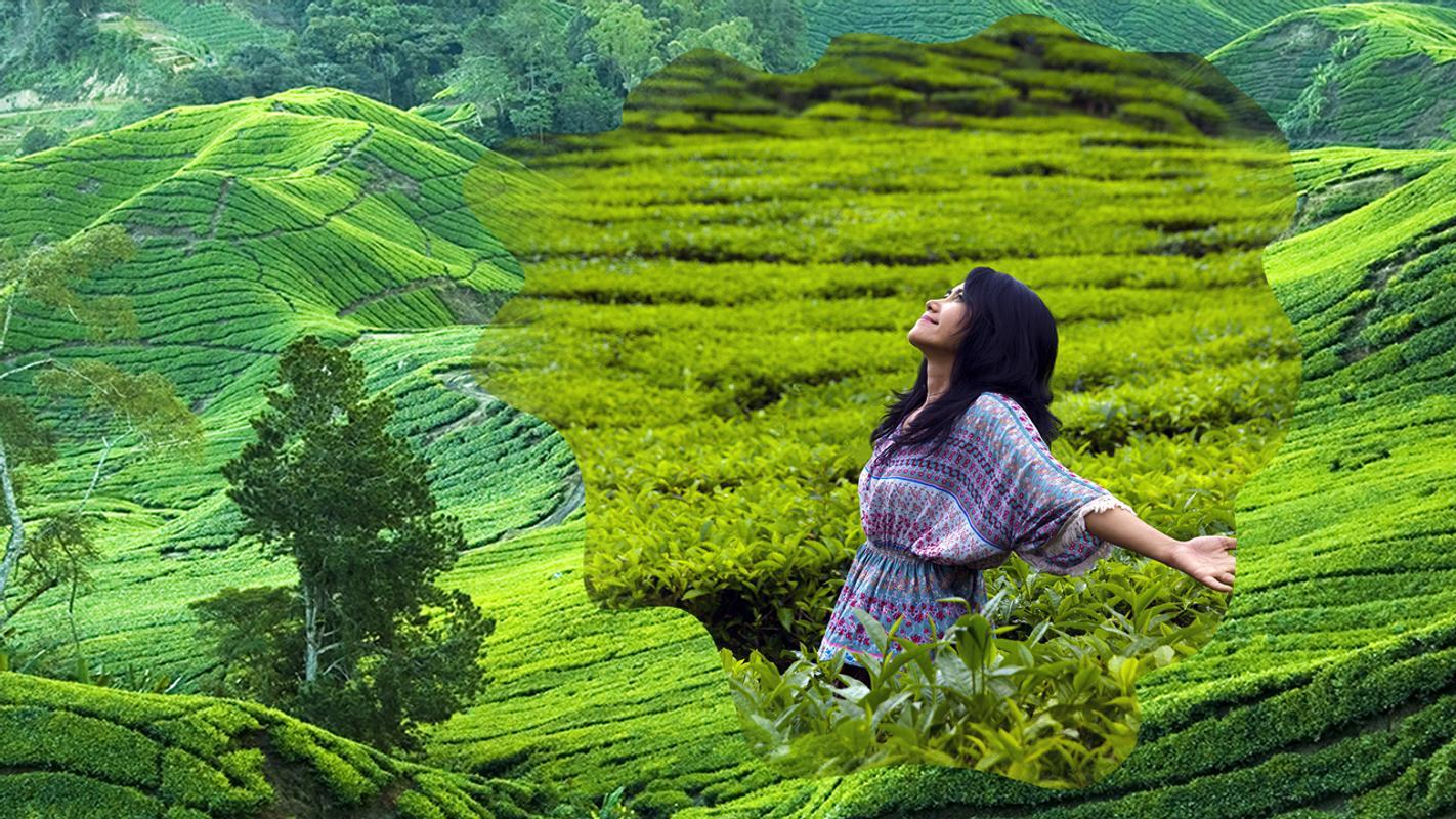 Marcos verdes de la colina for Android - APK Download