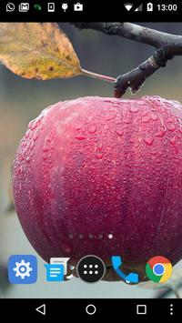 free apple wallpaper screenshot 1