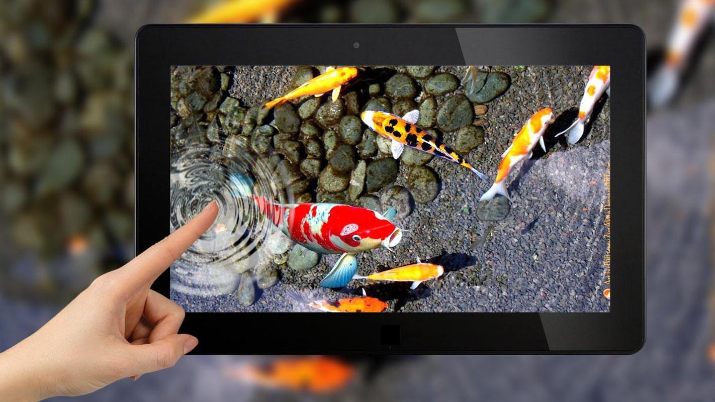 Schwimmende Fische Animation