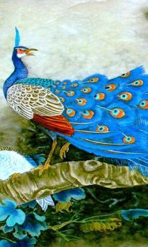 free peacock wallpaper poster