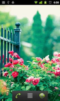 free rose garden wallpaper apk screenshot