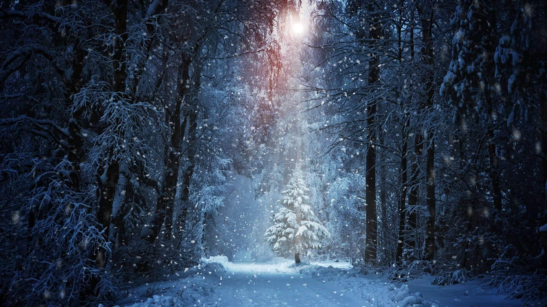 Snowfall Wallpaper Hd For Android Apk Download