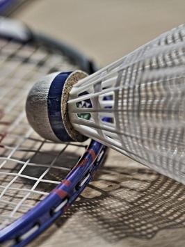 Badminton Wallpapers Mobile screenshot 2