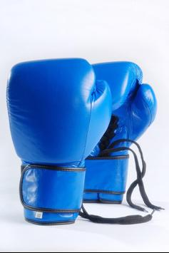 Boxing Wallpapers HD apk screenshot