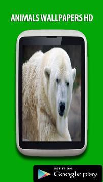 Animals Wallpapers HD Free apk screenshot