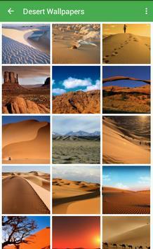 Desert Wallpapers poster