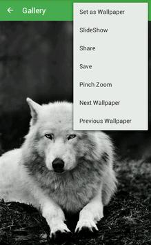Wolf Wallpapers apk screenshot