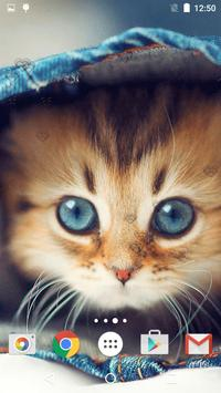 Cute Kittens Live Wallpaper screenshot 5