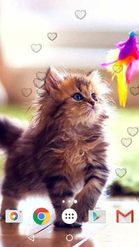 Cute Kittens Live Wallpaper screenshot 3