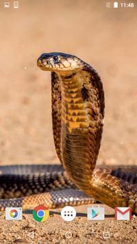 Snake Live Wallpaper HD poster