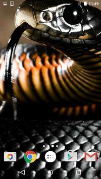 Snake Live Wallpaper HD apk screenshot