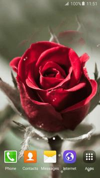 3D Rose Live Wallpaper apk screenshot