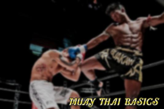 MUAY THAI BASICS poster