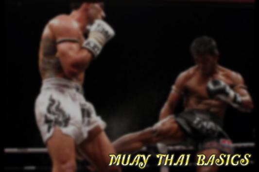 MUAY THAI BASICS screenshot 1