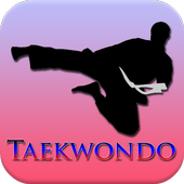 Taekwondo Training Program icon