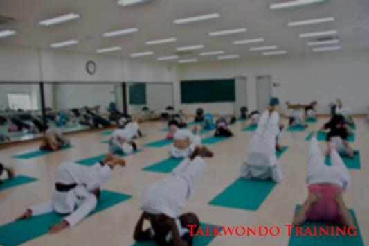 Taekwondo Training Program poster