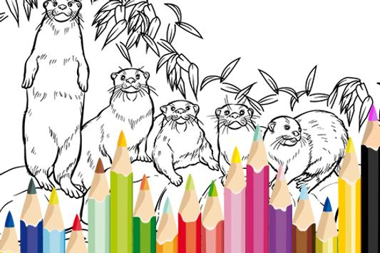 Zoo Coloring Game for Kids APK Download - Free Casual GAME for ...