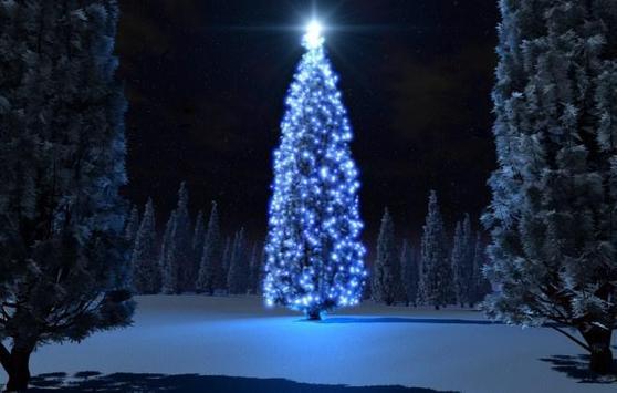 Free Christmas Wallpaper Downloads screenshot 5