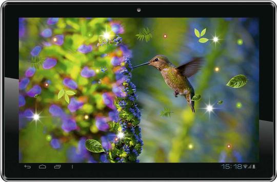 Colibri Amazing live wallpaper screenshot 1