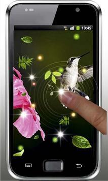 Colibri Amazing live wallpaper screenshot 4