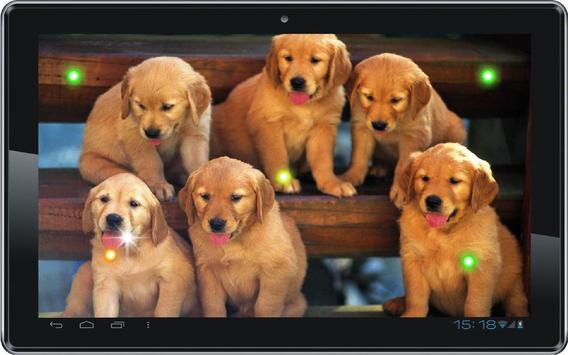 Puppies Voice live wallpaper screenshot 1