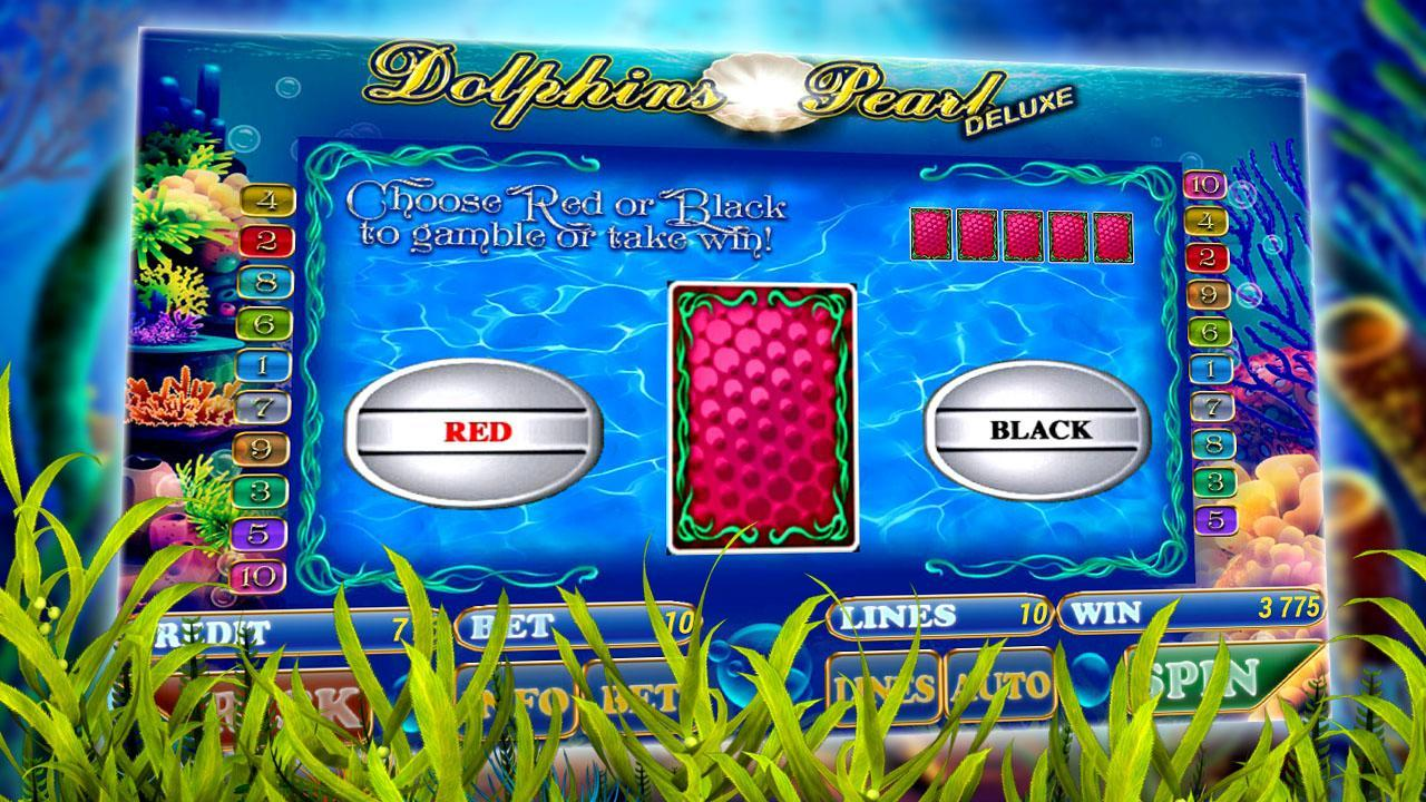Dolphins Pearl Android Free