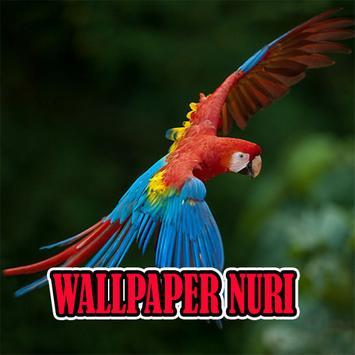Wallpaper Burung Nuri Terbaru For Android Apk Download