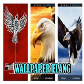 Wallpaper Burung Elang & Garuda icon