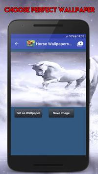Horse Wallpapers 4k apk screenshot