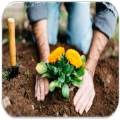 Gardening - Flowers Guide icon