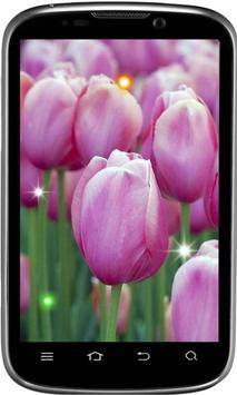 Spring Early Flowers LWP screenshot 3