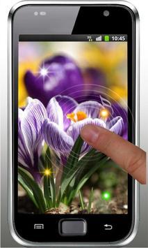 Spring Early Flowers LWP screenshot 4
